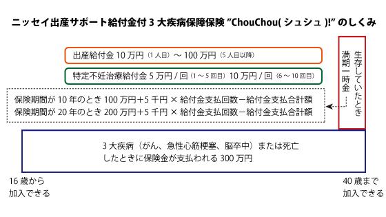 chouchou-1