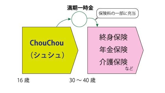 chouchou-3